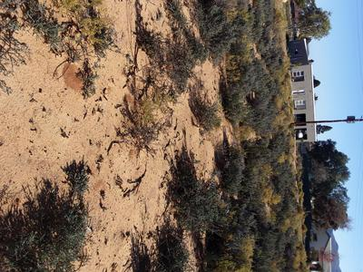 Vacant Land / Plot For Sale in Touwsrivier, Touwsrivier